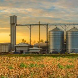 Sanitização em Moinhos de Trigo e Industrias de Alimentos